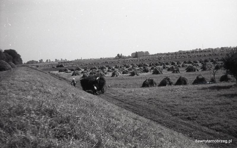 Tarnobrzeg, Nadole,II połowa lat sześćdziesiątych