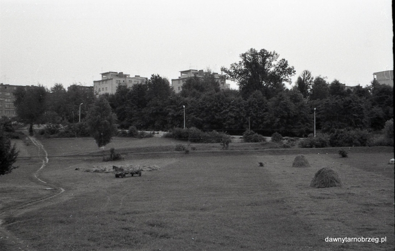 Tarnobrzeg,nad Wisłą , w głębi bloki przy ul. Waryńskiego,lata-siedemdziesiąte